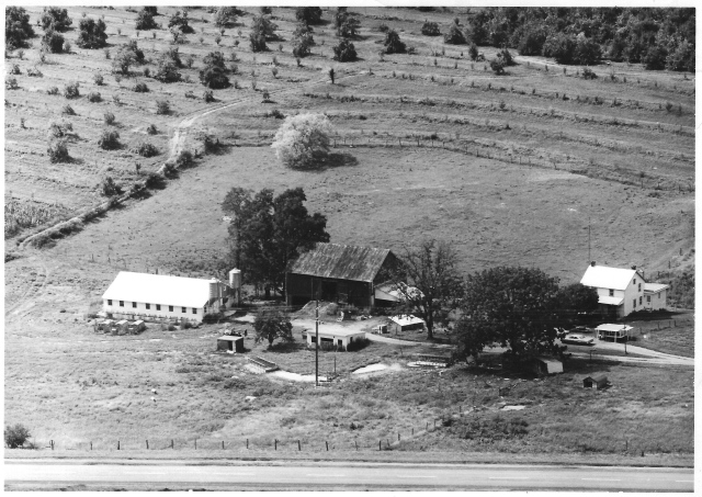 Ivy Hill Farm, 1960s-1