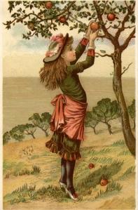 vintage farmer's daughter